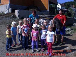 Besuch Besuch Pferdehof